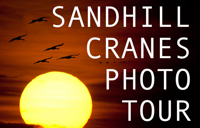 Bill Frakes: Nebraska Sandhill Cranes Photo Tour